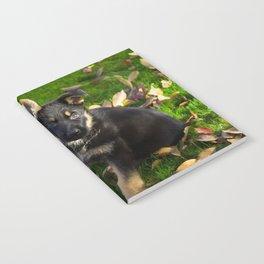 Little German Shepherd puppy Notebook