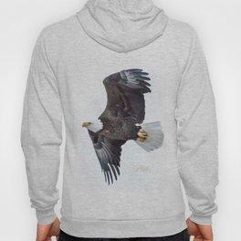 Eagle soaring Hoody
