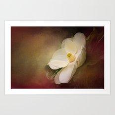 Magnolia in Bloom 1 Art Print