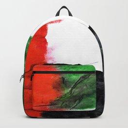 Old Watercolor UAE Backpack