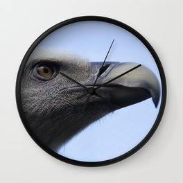 Headshot of young Griffon vulture, Gyps fulvus II Wall Clock