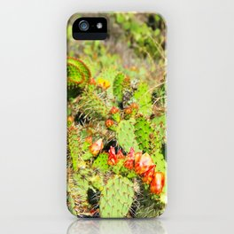 green cactus with red and yellow flower texture background iPhone Case