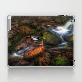 Colours of Autumn in a Brecon stream Laptop & iPad Skin