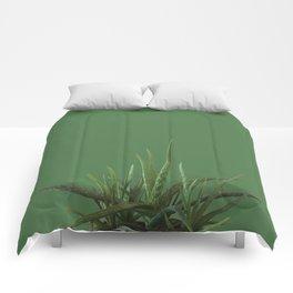 Avocado Aloe Comforters