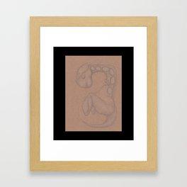 Specimen #18f (fetal) Framed Art Print