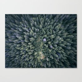 Camping in the Woods Canvas Print