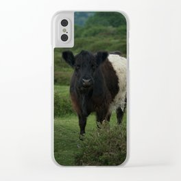 Belted Galloway Cow Clear iPhone Case