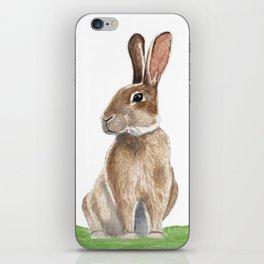 Rabbit in Grass Watercolor iPhone Skin