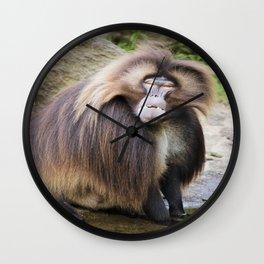 Baboon Looking At me Wall Clock