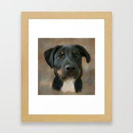 Sheprador Framed Art Print