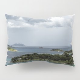 If I Win the Lotto Pillow Sham