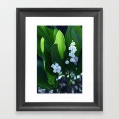 flowers: lilies  Framed Art Print