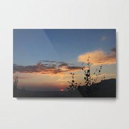 aspens at sunset - telluride, CO Metal Print