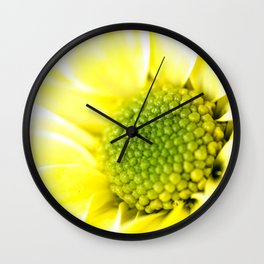 Yellow Daisy Macro Nature Photography Wall Clock