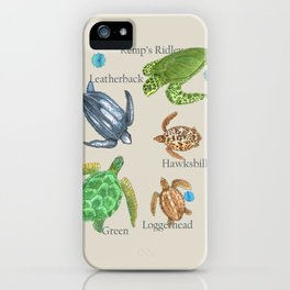Sea Turtle Types iPhone Case