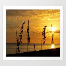 Golden Sea Oats Art Print