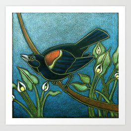 Redwing Blackbird with Water Arum Art Print