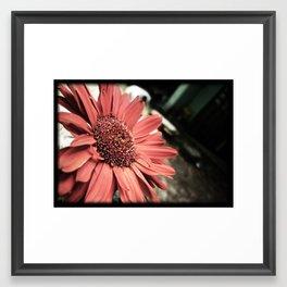 Small big flower Framed Art Print