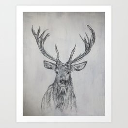 Stag in Pencil Art Print
