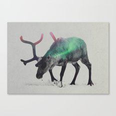 Reindeer In The Aurora Borealis Canvas Print