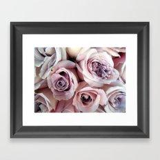 The Palest Roses Framed Art Print