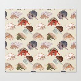 Hermit Crabs Canvas Print