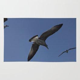 Seagulls  Rug