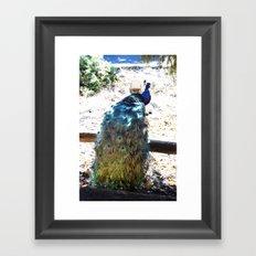 Show Off Framed Art Print