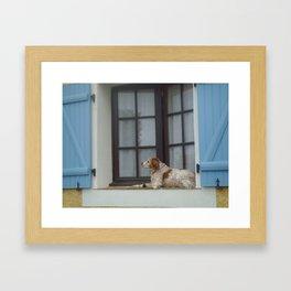 Pensive dog  Framed Art Print