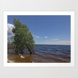 Tree in the lake Art Print