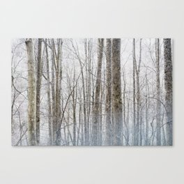 Smoky Forest Canvas Print