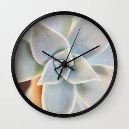 succulent plant on a Greek island Wall Clock