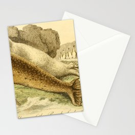 Vintage Print - Bullock's London Museum & Pantherion (1812) - Common Seal; Patagonian Penguin Stationery Cards