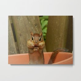 Mouthful Metal Print