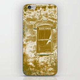 Window to Paradise iPhone Skin