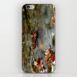 Stream & Leaves iPhone Skin