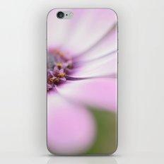 Soft Petals iPhone & iPod Skin