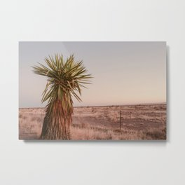 High Desert Sunset Metal Print