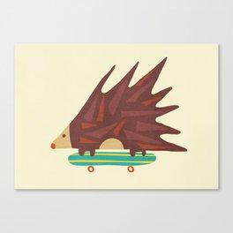 Hedgehog in hair raising speed Canvas Print