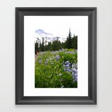 Meadow Framed Art Print