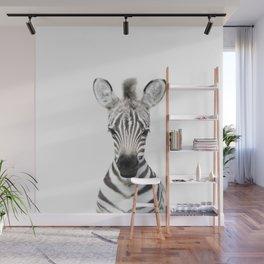 Baby Zebra Portrait Wall Mural