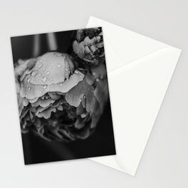 Peony after the rain - Black and White Stationery Cards