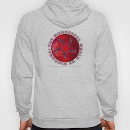 THE WONDERFUL WORLD OF WICCANS - 060 Hoody
