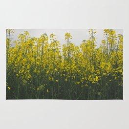 Rape flowers Rug
