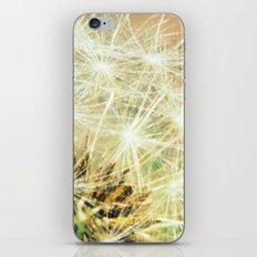 Dandy Macro fine art photography iPhone & iPod Skin