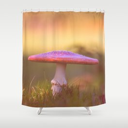 Fly agaric mushroom Shower Curtain