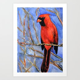 Red Cardinal - Song of Passion Art Print