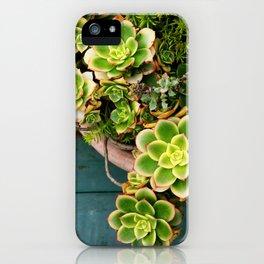 Summer Succulents iPhone Case