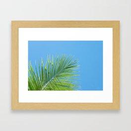 Vibrant Green Palm Leaf - Summer Tropical Vibe Framed Art Print