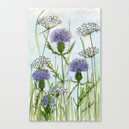 Thistle White Lace Watercolor Canvas Print
